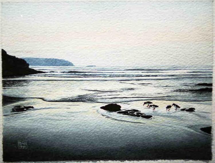 Little Haven, Pembrokeshire & Oyster Catchers. Watercolour