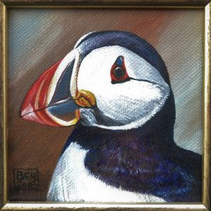 A Portrait of a Puffin